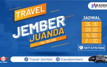 Paradiso Travel Jember - Juanda